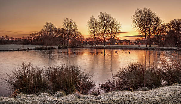 Winter Sunrise at Abergele Pond, North Wales by Christine Smart