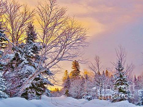 Winter sunrise by Brenda Ketch