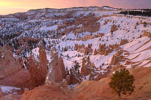 Sandra Bronstein - Winter Sunrise in Bryce Canyon