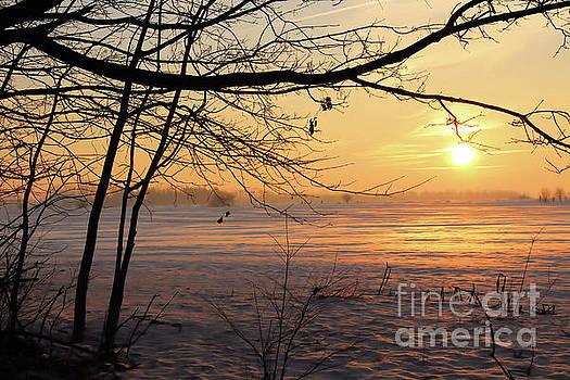 Winter Sunrise by Kristi Beers-Mason