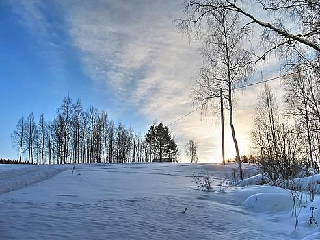 Winter sunrise by Maria Preibsch
