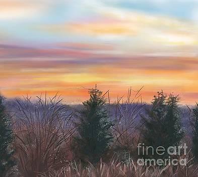 Winter Sunrise by Susan Sarabasha