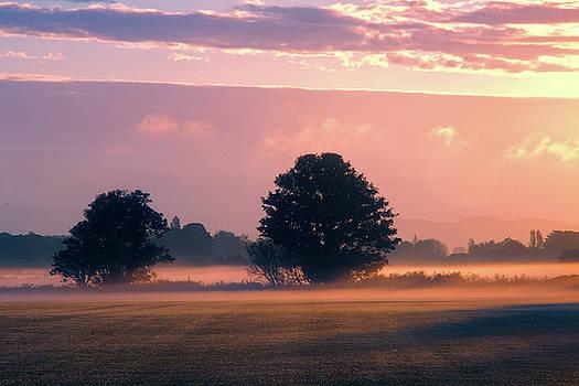 Winter sunrise by Susan Tinsley