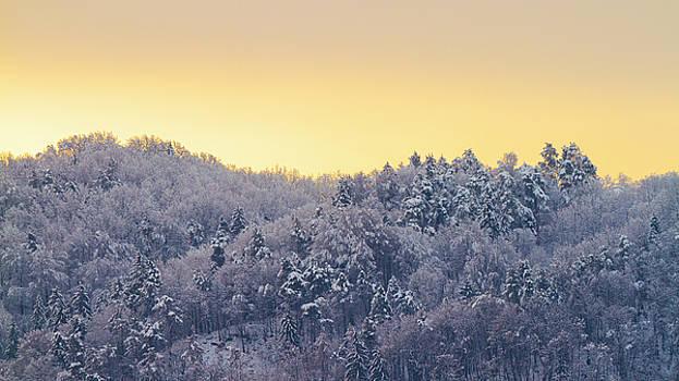 Vyacheslav Isaev - Winter sunrise