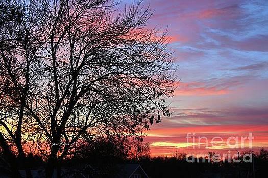 Winter Sunrise by Yumi Johnson
