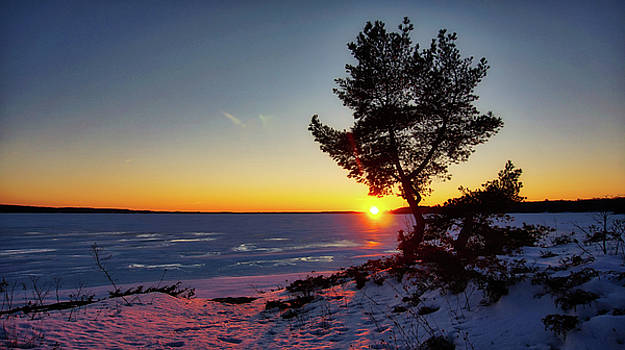 Winter Sunset by Bryan Smith