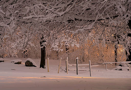 Winter Sunset Ft Hill Park by John Forde