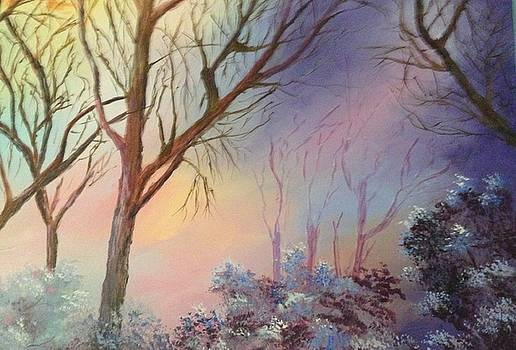 Winter Sunset by Kenna Westerman