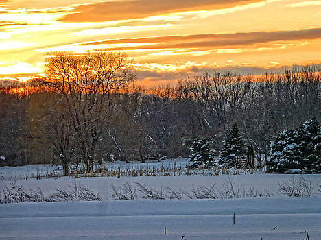 Dee Flouton - Winter Sunset Landscape