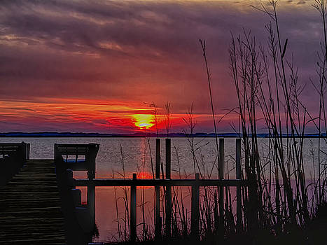 Winter Sunset by Sandra Anderson
