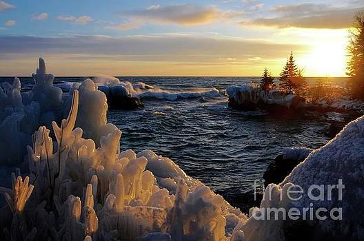 Winter Sunset by Sandra Updyke