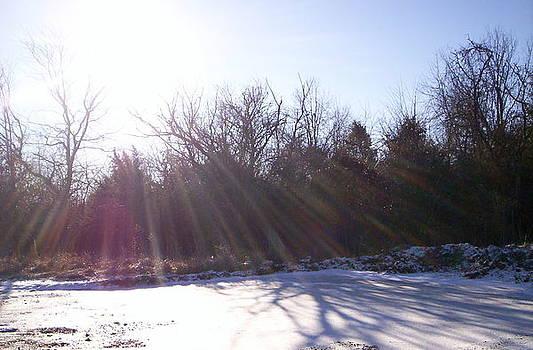 Winter Sunshine by Tom Burnett