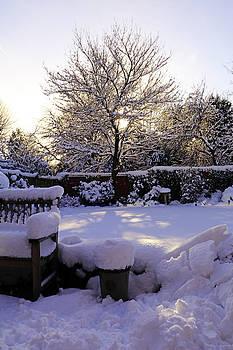 Winter Sunshine by Tony Murtagh