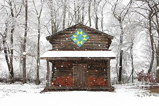 Winter Tobacco Barn by Benanne Stiens