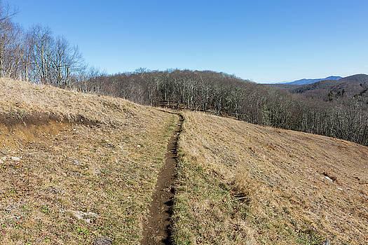 Winter Trail - December 7, 2016 by D K Wall