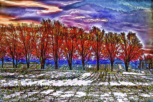 Winter Tree Line by Kimberleigh Ladd