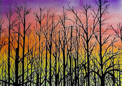 Winter trees at sunset by Ellen Canfield