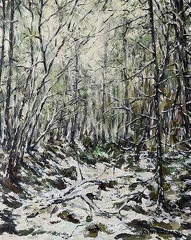 Winter Trees by Eugene Kuperman