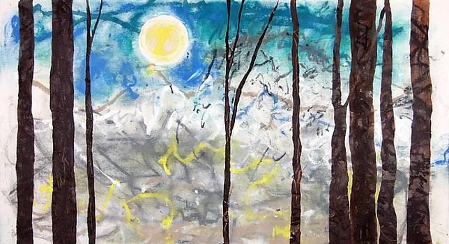 Winter Trees by Steven Kennedy