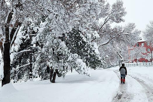 Winter Trekking-3 by Okan YILMAZ