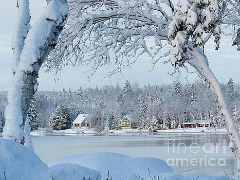 Winter view by Brenda Ketch