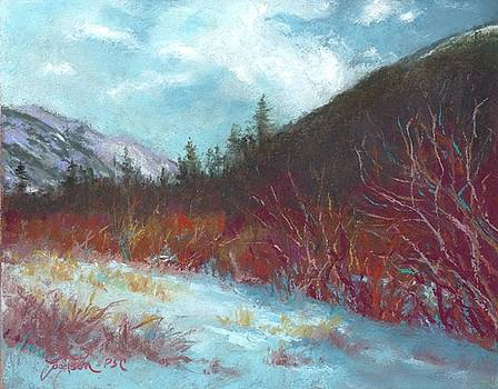 Winter View in Rocky Mountain National Park by Grace Goodson