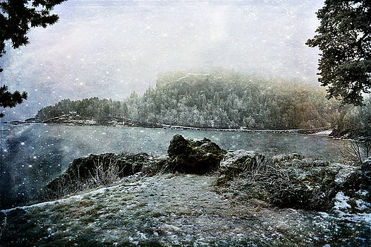 Winter View by Randi Grace Nilsberg