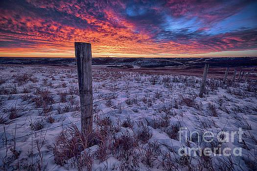 Winter Views by Ian McGregor