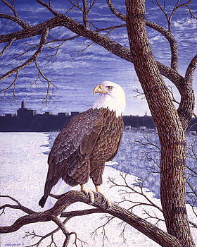 Winter Visitor - Bald Eagle by Craig Carlson