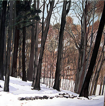 Winter Vista Sherwood by Joan McGivney