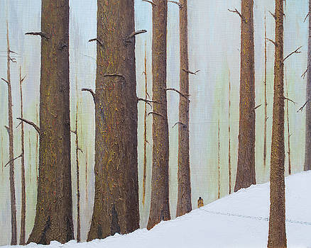 Winter Walk by L J Oakes