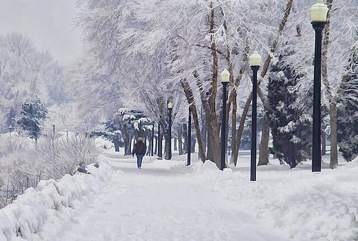 Winter walk by Lee Fortier