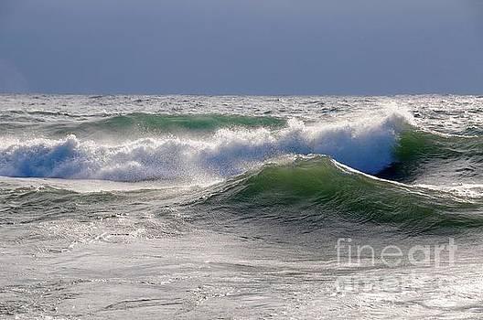 Winter Waves by Sandra Updyke