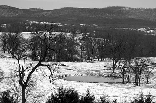 Winter Wonder by Misty Achenbach