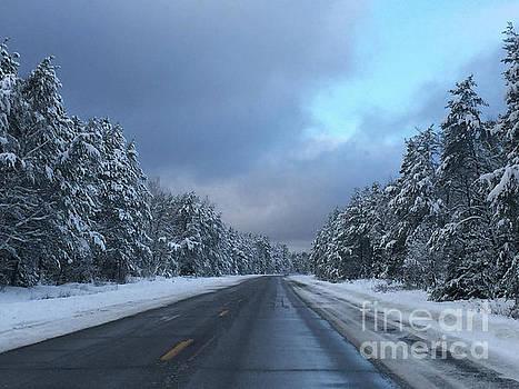 Winter Wonder by Nancy TeWinkel Lauren