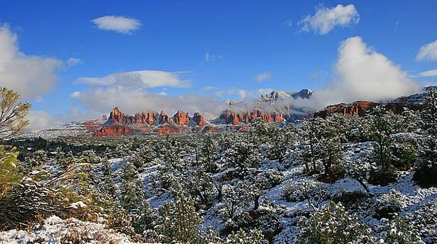 Winter Wonderland by Gary Kaylor