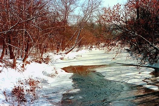 Gary Wonning - Winter Wonderland