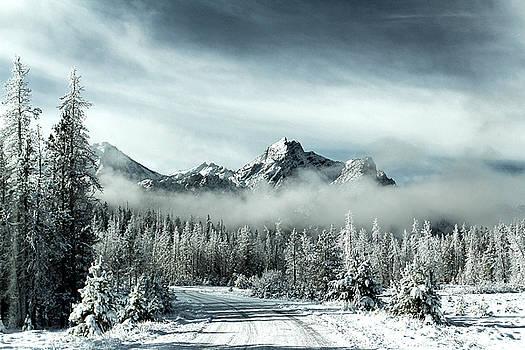 Winter Wonderland by Lisa Kidd