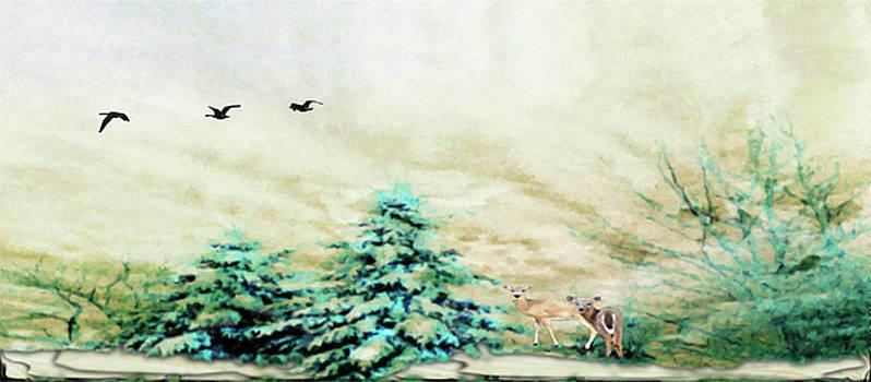 Mike Breau - Winter Wonderland