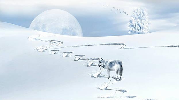 Winter Wonderland - Wolf by Andrea Kollo
