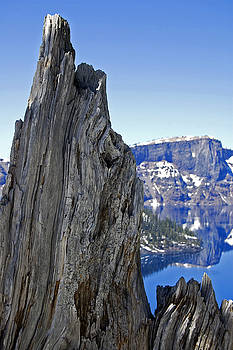 Winter Wood Crater Lake Oregon by Kristen Vota