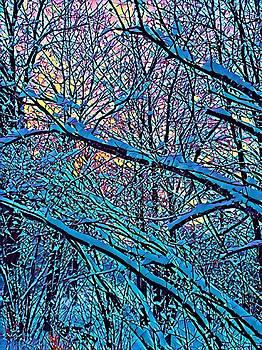 Brenda Plyer - Winter Woods 1