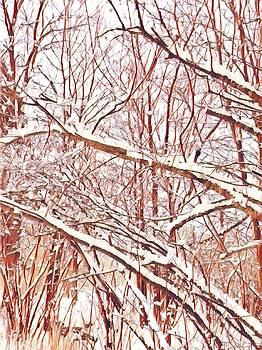 Brenda Plyer - Winter Woods 3