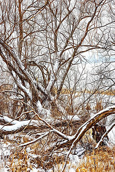 Winter Woods On A Stormy Day 3 - Paint by Steve Harrington