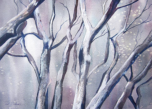 Winter Woods by Pat Vickers