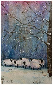 Winter wool  by Mona Davis