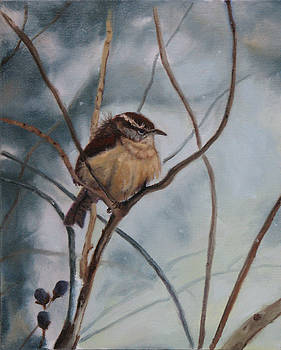 Winter Wren by Cynthia Vowell