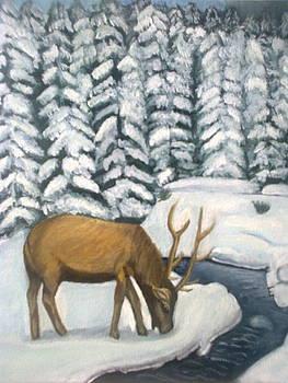 Winter by Zornitsa Tsvetkova