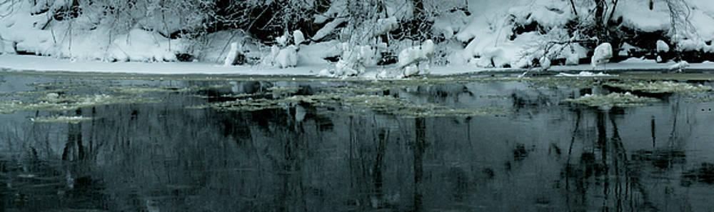 Linda Shafer - Wintergreen