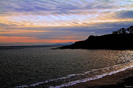 Winter's Beachcombing by Joseph Noonan